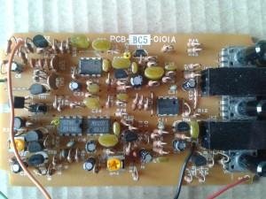 BC5-guts2